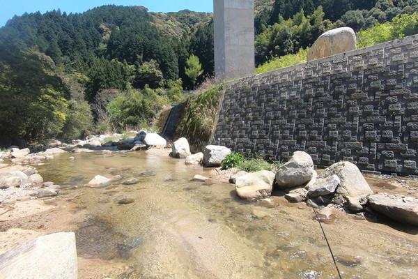川の水が透き通っている那珂川