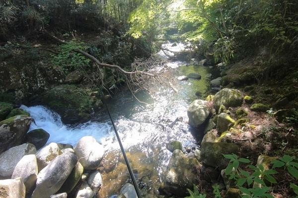 那珂川上流の好ポイント