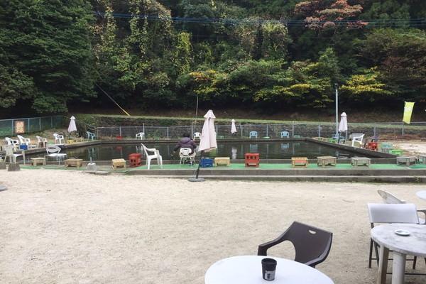 自然の森フィッシングリゾートの鯉の釣り堀