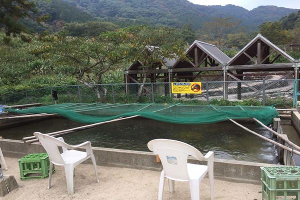 自然の森フィッシングリゾートのヤマメ釣り堀
