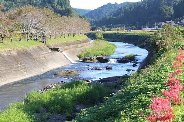 小国の志賀瀬川